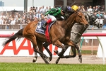 Alcopop to spell for next spring