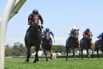 Widden Stakes Results: Golden Slipper Next for Away Game