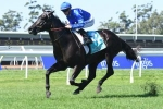 Kementari On Top Of Hobartville Stakes Betting