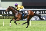 Golden Slipper Betting Firmer Santos To Run In Todman Stakes