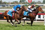 Change of luck saw Whateverwhenever take out Moonga Stakes