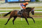 Sniper's Bullet's Winter Test For Emirates Stakes