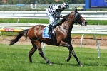 Freedman's Above Average Chance In Sydney Cup
