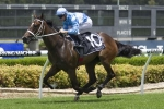 Magic Millions 2yo Classic favourites can't be split