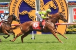 Late Blue Diamond Entry Possible For Fillies Preview Winner Sword Of Light