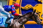 Nayeli to improve in Inglis 3yo Guineas