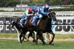 Williams To Ride Fontiton In Moir Stakes