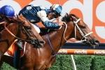 H.D.F. McNeil Stakes winner Immortal Love to head to Caulfield Guineas