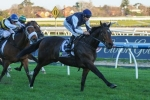 Stipulate Takes Crackerjack King's Place In Turnbull Stakes Field