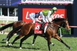 Blinkers on freshened up Divine Prophet in All Aged Stakes