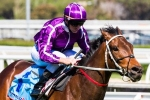 Waller looking for better showing from Boban in Apollo Stakes