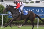 Brave Ali To Be Suited In Ipswich Cup