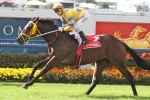 Margins Continues Road to Brisbane Cup