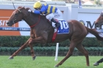 Ryan Hoping For Dry Track In Tattersall's Tiara
