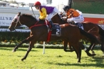 Le Val Racing for Magic Millions Cup Start