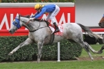 Linton Keeping Himself Company Before Hong Kong Mile