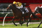 Spill The Beans Records Tough QTC Cup Win