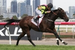 2000m of Australian Cup perfect for Suavito