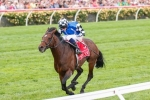 Jordon Lures Dartmouth for Caulfield Cup Bid