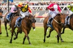 Geelong Cup fancy Zanbagh aiming towards Melbourne Cup