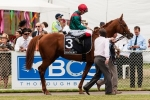 Waller Pleased with Brigantin Ahead of Sydney Cup