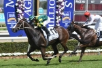 Magic Millions Cup winner Care To Think Stradbroke Handicap bound