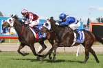 Queensland Oaks Trip No Problem For Tinto