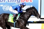 Tawteen to test her speed in Black Caviar Lightning