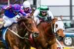 Emirates Stakes Next for Crystal Mile Winner Toydini