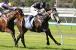 Price Duo To Improve From McNeil Stakes Run
