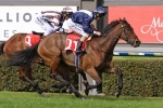 Good barrier and smart gallop has Viddora ready for Winterbottom Stakes success