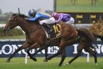 Falkenberg can run the distance of the Queensland Oaks
