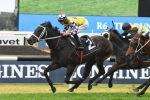 Waller can't split his 3 Golden Rose Stakes runners