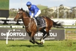 Golden Rose winner Astern for Caulfield Guineas