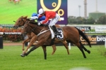 Zanbagh Primed for Festival Stakes