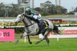 White Sage won't surprise O'Shea with Breeders Classic win