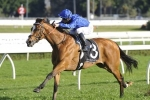 Hartnell odds on for step up to 2000m in Hill Stakes