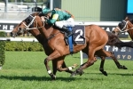 2014 Caulfield Cup: Barrier To Help Moriarty