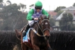 Wells Denies Bashboy Historic Grand National Steeplechase Win