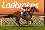 Begg Selects Caulfield Cup as Nonconformist's Spring Carnival target