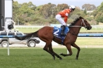 Waller pair on trial for Melbourne Cup in Moonee Valley Gold Cup