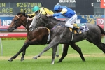 Hinchinbrook Primed For Aussie Assault At Ascot
