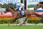 Sea Galleon Trades Summer Cup Start For Spell