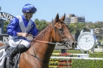 Hawkesbury Guineas Up Next for South Pacific Winner Indy Car