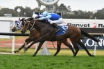 Tarka to wear blinkers in 2018 Spring Champion Stakes