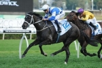 Waller Happy With Myer Classic Duo