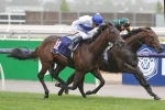 Australian Guineas Favourite Alligator Blood Passes CS Hayes Stakes Test