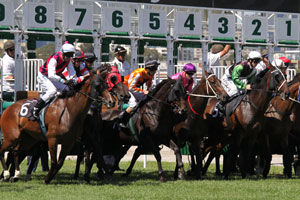Sky High Stakes Winner Master of Wine Could Backup in the Ranvet